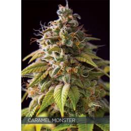 Caramel Monster