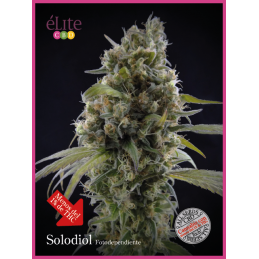 Solodiol