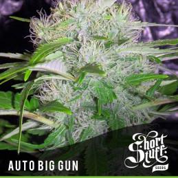 Auto Big Gun