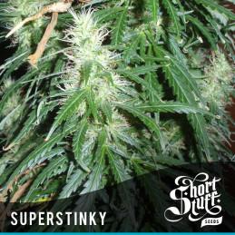 Super Stinky