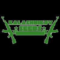 Kalashnikov Seeds nasiona marihuany, konopi