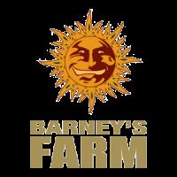 Barney's Farm nasiona marihuany, konopi