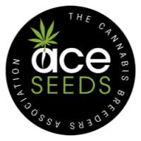 Ace Seeds nasiona marihuany, konopi