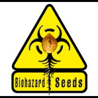 Biohazard  nasiona marihuany, konopi feminizowane