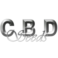 CBD Seeds nasiona marihuany, konopi feminizowane, automaty