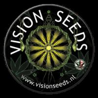 Vision Seeds feminizowane nasiona marihuany, konopi, indoor, outdoor